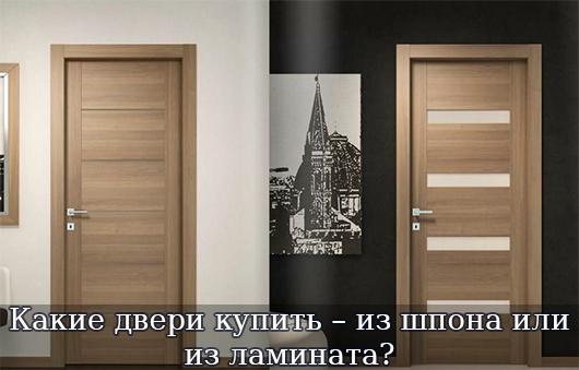 Какие двери купить – из шпона или из ламината?g