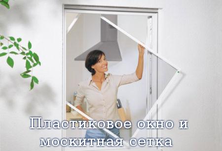 Пластиковое окно и москитная сетка